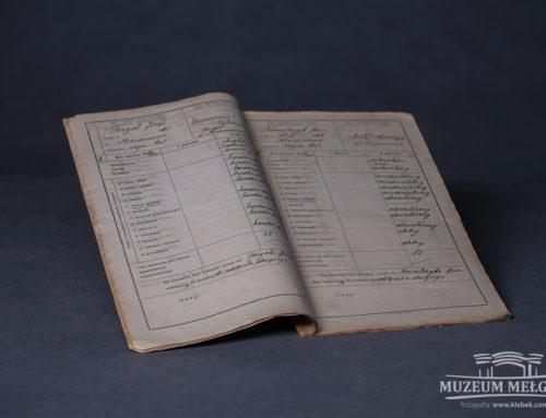 Katalog klasyfikacyjny (Dziennik szkolny) z 1917 r.
